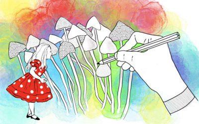 Wenn eine eine Reise tut: Mein Magic Mushroom-Trip